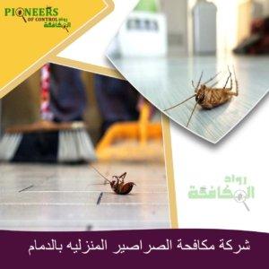 مكافحة الصراصير المنزلية بالدمام