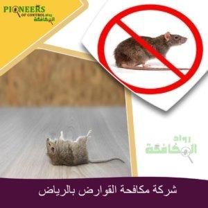 مكافحة الفئران بالرياض